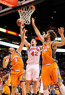 Mar. 26 2010; Phoenix, AZ, USA; New York Knicks center David Lee (42) puts up a shot against Phoenix Suns guard Goran Dragic (2) and center Robin Lopez (15) in the first half at the US Airways Center.  Mandatory Credit: Jennifer Stewart-US PRESSWIRE.