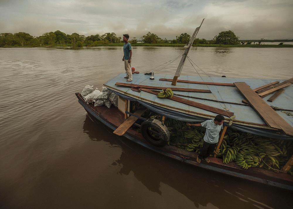 Brésil, Amazonas, rio Amazonas. Un producteur de bananes s'ammarre au passage d'un bateau pour livrer sa recolte qui sera transportée et vendue à Manaus.