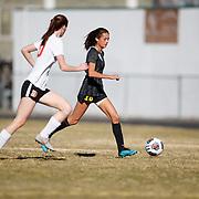 2019 Galena High Girls Soccer