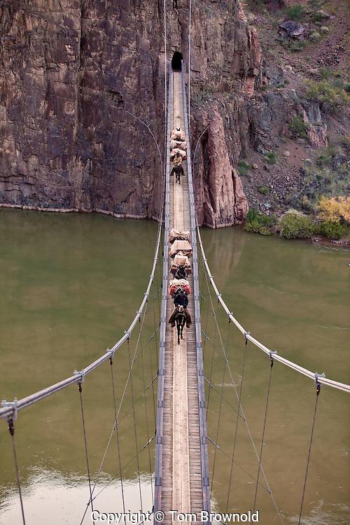 Packers crossing the Colorado river using the Black Bridge, on their run into Phantom ranch