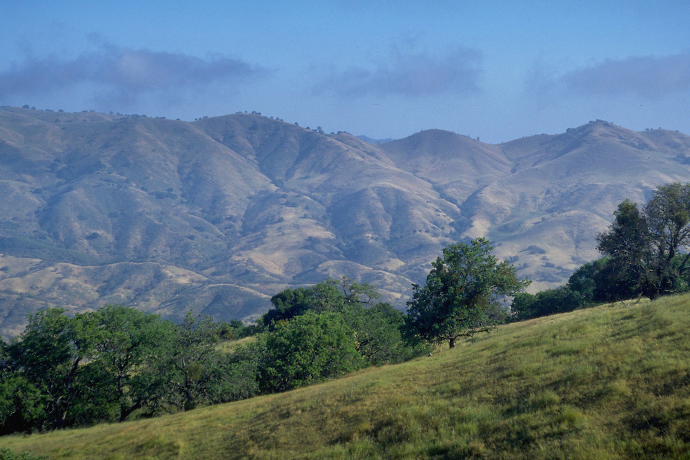 View to the southwest from a ridge on the Romero Ranch on Mount Hamilton.
