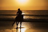 Horse rider at the beach at sunset.