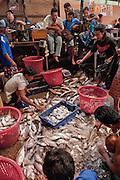 San Pya Fish Market, Yangon, Burma