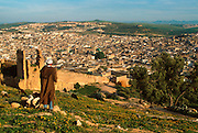 MOROCCO, FEZ Old city with Quraouiyine Mosque (green roof) from above the city walls near Merinid tombs