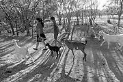 A comunidade Matalotagem dos Borges fica no munic&iacute;pio de Flores, no Sert&atilde;o do Page&uacute;, em Pernambuco. Vivem aqui cerca de seis fam&iacute;lias de trabalhadores rurais, todos da linhagem &lsquo;Borges&rsquo;, o que explica o nome da comunidade. O rio Page&uacute; que corta a comunidade est&aacute; seco h&aacute; cerca de 5 anos. H&aacute; alguns anos os moradores vem sofrendo com a enorme seca que abateu todo o semi&aacute;rido nordestino. Nesta comunidade, iniciativas de planta&ccedil;&atilde;o com sementes crioulas em Sistema Agroflorestais (SAFs) tem sido implantadas com o aux&iacute;lio do Centro Sabi&aacute;. <br /> Ridalva Mendes Borges &eacute; m&atilde;e de tr&ecirc;s filhos. &ldquo;Tenho orgulho de ser separada. Tenho orgulho de ser pai e m&atilde;e&rdquo;. Depois de sofrer viol&ecirc;ncia dom&eacute;stica em um casamento de 22 anos ela se separou. Lideran&ccedil;a comunit&aacute;ria, ela &eacute; delgada de base no Sindicato dos Trabalhadores Rurais de Flores. Dentre os seus vizinhos ela &eacute; a &uacute;nica que adotou, at&eacute; agora, o sistema agroflorestal &ndash; h&aacute; cerca de dois anos. Conta que herdou parte do conhecimento do seu pai, agricultor, que nunca usou veneno em suas culturas. Agora, com o aux&iacute;lio t&eacute;cnico do Centro Sabi&aacute;, ela planta sem agrot&oacute;xico e usando sementes crioulas de milho, feij&atilde;o e fava (al&eacute;m disso planta jerimum, melancia e hortali&ccedil;as). A sua filha, Rafaela &eacute; uma das coordenadoras do Grupo de Viv&ecirc;ncia (movimento jovem do munic&iacute;pio), o grupo almeja conquistar uma vaga no Conselho de Agricultores Rurais do Munic&iacute;pio e a cria&ccedil;&atilde;o de uma associa&ccedil;&atilde;o &ndash; em busca de direitos concedidos aos agricultores adultos.  <br /> Mariano Rodolfo Mendes da Silva