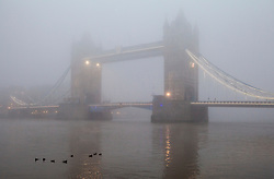 © London News Pictures. LONDON, UK - NOVEMBER 2ND 2015: Early morning fog surrounding the iconic Tower Bridge in London. Photo credit: Chris Dorney/LNP