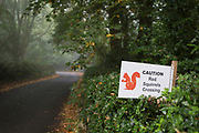 A sign erected for the benefit of rural Northumbrian drivers, warning of crossing red squirrels, on 26th September 2017, in Eshott, Northumberland, England.