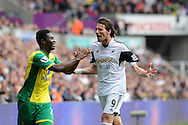 Michu of Swansea City reacts<br /> Barclays premier league match , Swansea city v Norwich city at the Liberty stadium in Swansea, South Wales on Saturday 29th March 2014.<br /> pic by Phil Rees, Andrew Orchard sports photography.