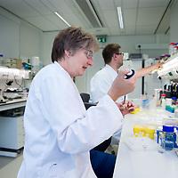 Nederland, Amsterdam, 26 juli 2017.<br /> Het Microbiologisch Lab van VUmc.<br /> De microbiologen van de UvA verhuisden vorig jaar voor een half miljoen euro naar de VU en nu moeten ze weer terug. Waarheen is nog niet duidelijk want hun oude lab is alweer bezet. Dat is balen, en vooral voor de aio's (assistent in opleiding) want die hebben allemaal een tijdelijk contract en zien hun onderzoekstijd nu opgaan aan heen en weer verhuizen. Edward en Alejandro moeten met hun gevoelige microscopen opnieuw aan de wandel.<br /> Op de foto: Alejandro en collega's aan het werk in het Lab.<br /> Alejandro komt voor in het artikel.<br /> <br /> Foto: Jean-Pierre Jans