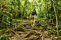 Trilha para o Morro das Aranhas. Florianópolis, Santa Catarina, Brasil. / Morro das Aranhas Trail. Florianopolis, Santa Catarina, Brazil.