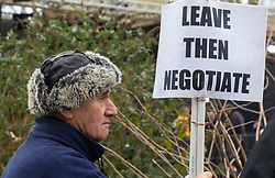 A lone pro-Brexit protester appears to believe that Britain would hdo better to simply walk away from the EU and negotiate a deal later. London, January 16 2019.