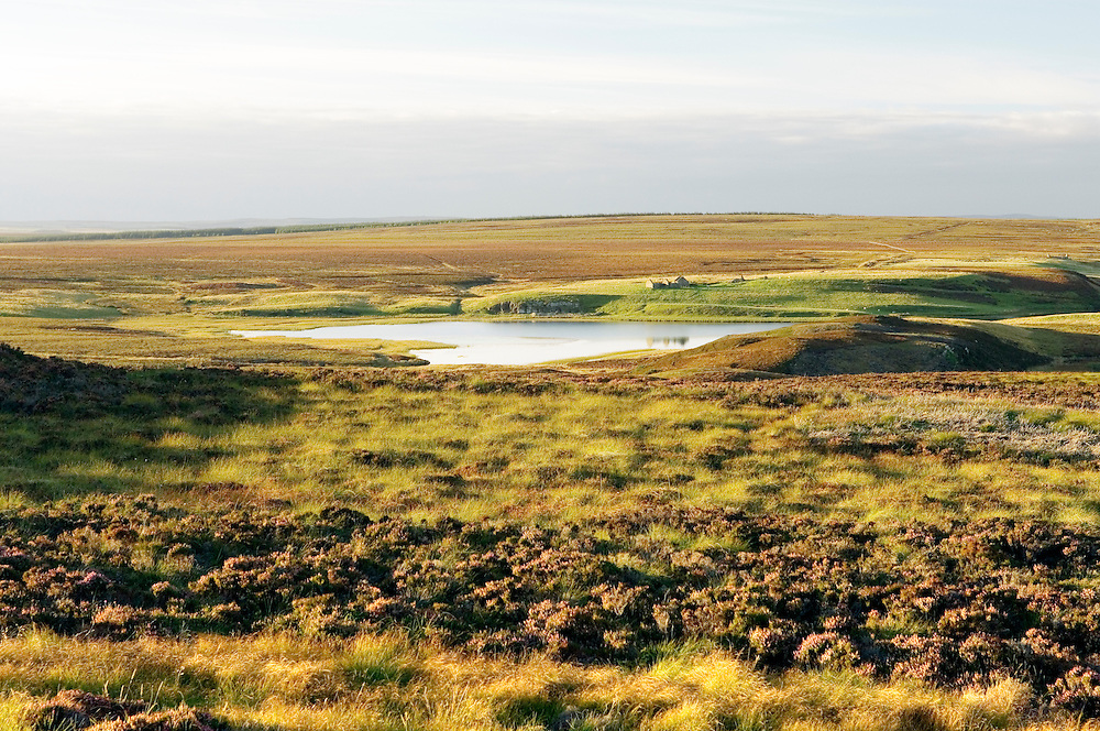 North over Loch of Yarrows 7 miles SW of Wick. Typical flat Floe country landscape in Caithness region of northeast Scotland, UK