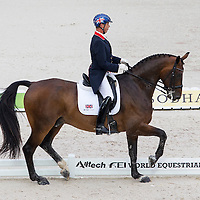 Dressage Team & Individual Grand Prix - Sessions 1&2