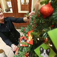 Jennifer Caldwell, of Tupelo, a volunteer for the Tupelo-Lee Humane Society, decorates the Santa Paws Christmas Tree that is set up inside the Mayor's office in Tupelo. The tree is decorated with tags that have the needs of pets and the humane society posted on the back.