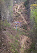 Wouter Hamelink, white shirt, lower right, approaches the Testicle Spectacle at the Barkley Marathons.