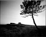 THE ATLANTIC WALL. .pic shows: FRANCE. BLOCKHOUSE AT  LA TRINTE-SUR-MER NEAR CARNAC ON THE ATLANTIC COAST..WORLD WAR TWO ENDED IN EUROPE IN MAY 1945, THIS YEAR SEES THE 60th ANNIVERSARY OF THAT VICTORY..THE ATLANTIC WALL BUILT BY GERMANY IN WORLD WAR 2 STRETCHED FROM NORWAY VIA DENMARK, HOLLAND, BELGIUM AND FRANCE TO THE SPANISH BORDER. THE MAIN CONCENTRATION OF BUNKERS,BLOCKHOUSES AND DEFENCES WERE ALONG THE DUTCH, BELGIAN AND FRENCH COASTAL AREAS MOST UNDER THREAT FROM AN ALLIED INVASION. THE CONSTRUCTION OF THE WALL BEGAN IN 1942 AND CONTINUED UP UNTIL THE JUNE 6th ALLIED INVASION ON D-DAY IN 1944..TENS OF THOUSANDS OF WORKERS AND PRISONERS FROM THE GERMAN OCCUPIED AREAS OF EUROPE WERE EMPLOYED BY THE ORGANISATION TODT NAMED AFTER FRITZ TODT, THE GERMAN ENGINEER WHO DIED IN 1942 (TO BE SUCEEDED BY ALBERT SPEER) IN THE BUILDING WORK. BETWEEN THE RIVERS LOIRE AND DIVES 87,257 WORKERS WERE USED INCLUDING 55,000 FRENCHMEN, 11,500 GERMANS, 4,200 DUTCH, 6.600 BELGIANS, 2,600 NORTH AFRICANS AND SEVERAL THOUSAND FROM EASTERN EUROPE..THE ATLANTIC WALL WAS THE LARGEST BUILDING PROJECT SINCE THE ROMAN EMPIRE. MANY OF THE COLOSSAL GUN BUNKERS AND UNDERGROUND DEFENSIVE CHAMBERS REMAIN. SOME HAVE FALLEN FROM CLIFF TOP POSITIONS WHILE OTHERS ARE PARTLY CONSUMED BY SAND DUNES. THE RAVAGES OF WAR, TEN THOUSAND TON BOMBS AND 60 YEARS OF COASTAL WEATHER HAVE HARDLY AFFECTED THESE LEVIATHAN LIKE STRUCTURES WHICH LOOK LIKELY TO LAST AS LONG AS THE RUINS OF ANCIENT ROME. A FITTING REMINDER OF A WORLD THAT COULD HAVE BEEN FROM 60 YEARS AGO..COPYRIGHT PHOTOGRAPH BY BRIAN HARRIS  © 2005.07808-579804