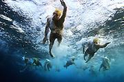היום הראשון של אליפות ישראל ב טריאתלון אילת<br /> <br /> <br /> <br /> עבור<br /> <br /> דסק<br /> <br /> 24<br /> <br /> דקות<br /> <br /> ספורט<br /> <br /> <br /> <br /> פירסום תמונה עבור 400 שקלים<br /> <br /> לשימוש חד פעמי<br /> <br /> 0523387998