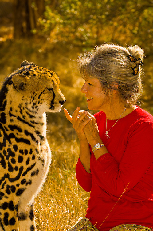 Lente Roode with a cheetah named Sam at the Hoedspruit Endangered Species Centre (she is the founder of the center), near Kruger National Park, South Africa