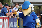 Haydon the Womble high fiving a AFC Wimbledon fan during the EFL Sky Bet League 1 match between AFC Wimbledon and Coventry City at the Cherry Red Records Stadium, Kingston, England on 11 August 2018.