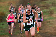 Westwood sophomore Ashley Walker pushes up the hill maintaining second place in the first mile of the Tri-Valley League Championship at McCarthy Park in Medfield, October, 28, 2015.
