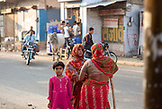 Jaipur  Rajasthan  Northern India.<br />