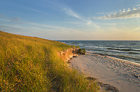 Dunes, Ludington State Park Michigan