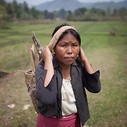 India: Northeast, Meghalaya