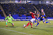 Jacob Murphy of Coventry City FC (on loan from Norwich City) sees his shot saved by Mark Halstead of Shrewsbury Town during the Sky Bet League 1 match between Shrewsbury Town and Coventry City at Greenhous Meadow, Shrewsbury, England on 8 March 2016. Photo by Mike Sheridan.