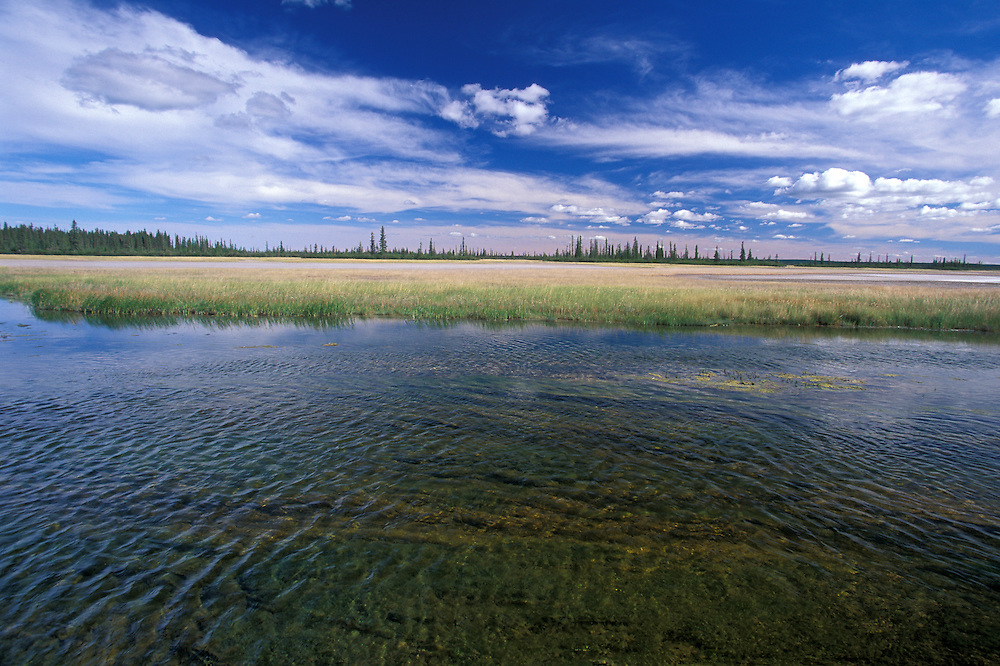 Salt Plain, Wood Buffalo National Park, Alberta, Canada