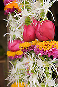 COPYRIGHT 2007 CHRISTINA SJ&Ouml;GREN<br /> ALL RIGHTS RESERVED<br /> Flowers on a street market, Bombay (Mumbai), India
