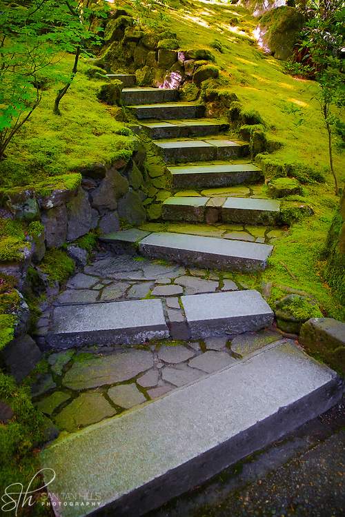 Path through Japanese Garden - Portland, OR