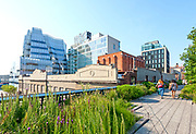 The High Line, New York City. The High Line Park in the Chelsea neighborhood of Manhattan, New York City.