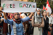 "After the speeches, the protesters chant slogans such as ""Viva, viva Palestina"" and ""Free, free Palestine"""