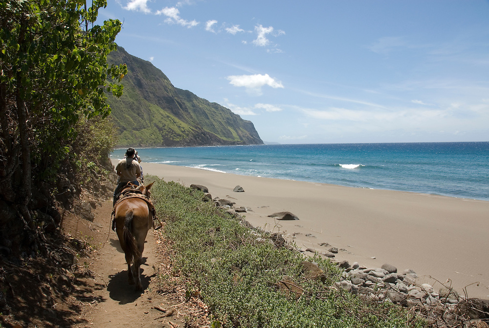Hawaii: Molokai, the Mule Ride from the cliff tops down 1,600 feet to the leper colony at Kalaupapa..Photo himolo152-71915.Photo copyright Lee Foster, www.fostertravel.com, lee@fostertravel.com, 510-549-2202