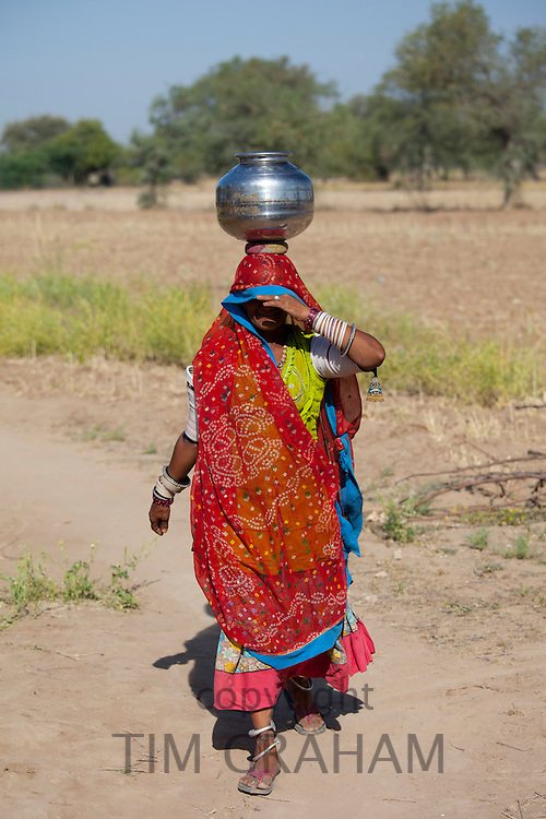 Indian Bishnoi woman carrying water pot near Rohet in Rajasthan, Northern India