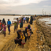 Rohingya Exodus 2017