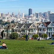Painted ladies. San Francisco, CA.