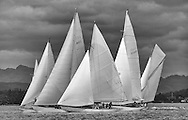 Close Racing at the start of the passage race to Rothesay off Helensburgh. Mikado, Solway Maid, Clio, Sonata and Viola race for the favoured end.<br />