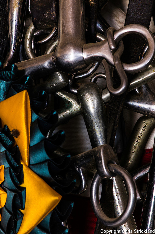 Bridles and Bits hang in the tack room of an eventing yard.