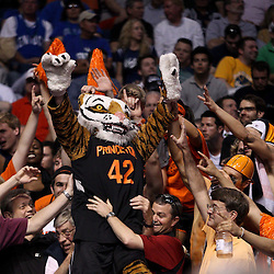 Mar 17, 2011; Tampa, FL, USA; The Princeton Tigers mascot in the stands with fans during second half of the second round of the 2011 NCAA men's basketball tournament against the Kentucky Wildcats at the St. Pete Times Forum. Kentucky defeated Princeton 59-57.  Mandatory Credit: Derick E. Hingle
