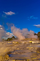 The 30 meter high Pohutu Geyser erupting, Te Puia (New Zealand Maori Arts & Crafts Institute), Whakarewarewa Thermal Valley, Rotorua, North Island, New Zealand.