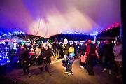 coromandel town illume festival of light 2016 coromandel peninsula photography by fleaphotos  felicity jean photography