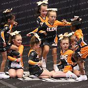 1034_JLDC  - Cubs
