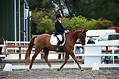 56 - 03rd Sept - Team Dressage