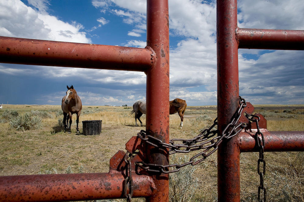 Horses in a pasture on the edge of town. Lost Springs has three residents. It is the smallest incorporated town with a post office in the nation. Converse County, Wyoming, 9/2/2007 Photo by Ben Depp