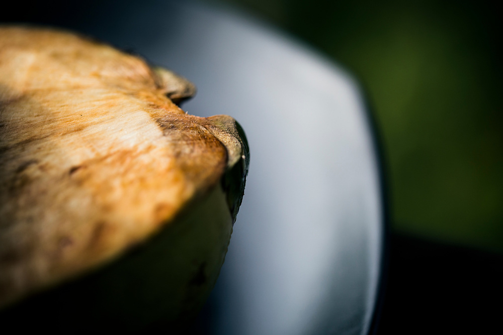 A detail of a green coconut shell.