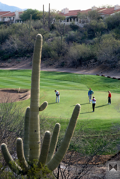 Foursome putting on green, Canyon hole #4, Saguaro cactus in foreground. ©1993Edward McCain, All rights reserved. Mccain Photography, McCain Creative.