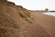 Rapidly eroding cliff of soft Red Crag rock at East Lane, Bawdsey, Suffolk, England