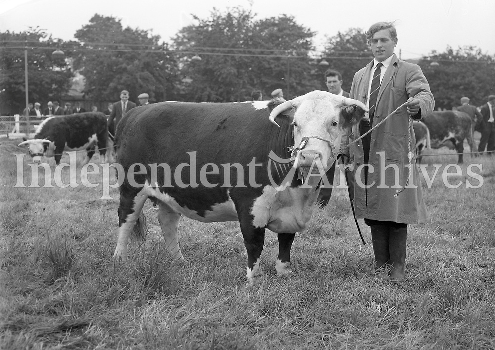 29595<br />