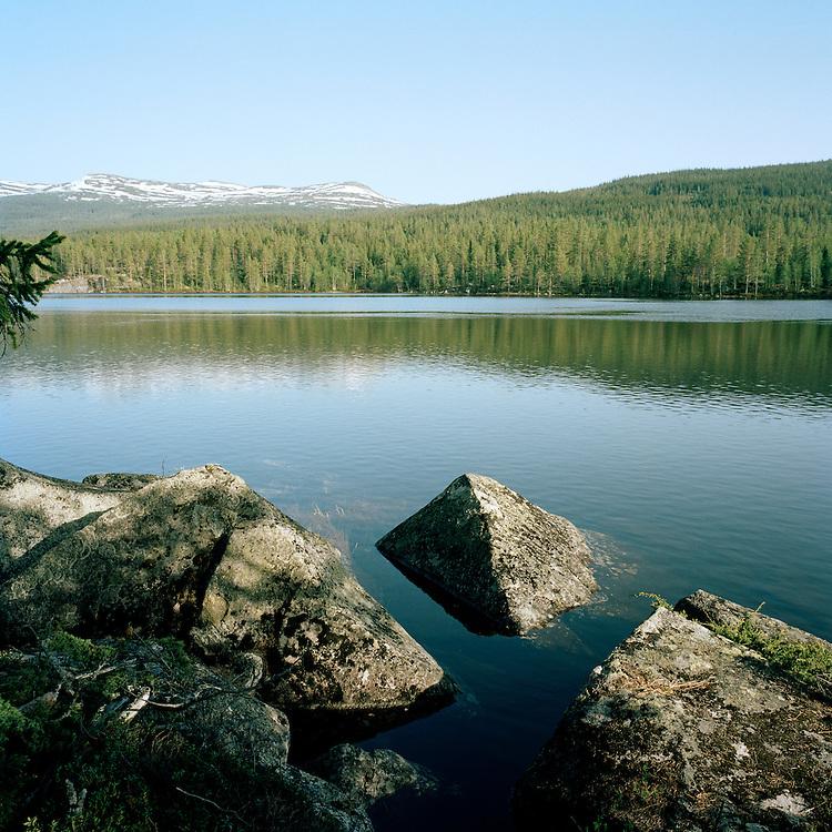 Skrukkefylla, Norway. . ..Photo by Knut Egil Wang /MOMENT